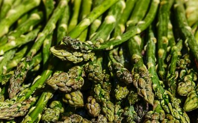 Portwood Asparagus